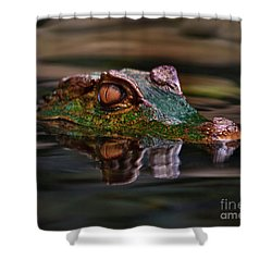 Alligator Above Water Reflection Shower Curtain