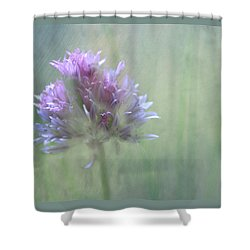 Allium Impressionism Shower Curtain