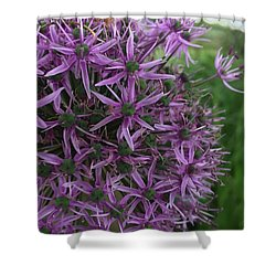 Allium Stars  Shower Curtain