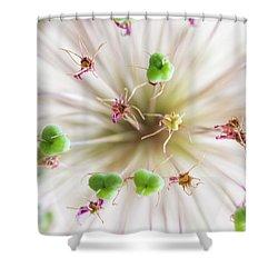 Allium Zoom Shower Curtain
