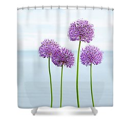 Alliums 2 Shower Curtain