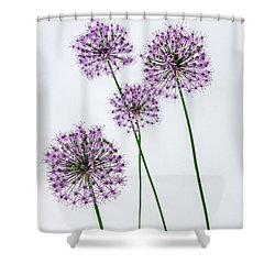 Alliums Standing Tall Shower Curtain by Susan  McMenamin