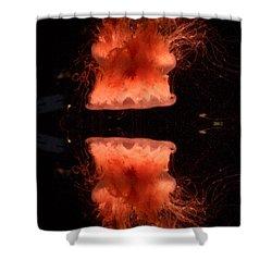 Alluring Jellyfish  Shower Curtain