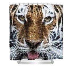 Alluring Tiger Shower Curtain