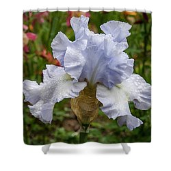 Shower Curtain featuring the photograph Almost Blue Bearded Iris by Jean Noren