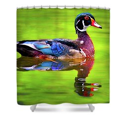 Almost Perfect Wood Duck Shower Curtain by Jean Noren
