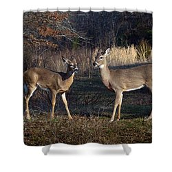 Almost Spring Shower Curtain by Bill Stephens