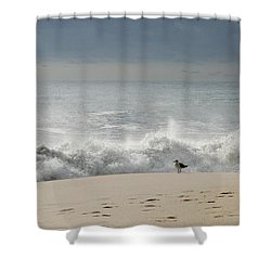 Alone - Jersey Shore Shower Curtain by Angie Tirado