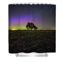 Shower Curtain featuring the photograph Alone by Aaron J Groen