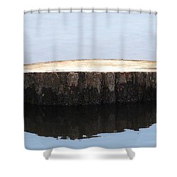 Shower Curtain featuring the photograph Alone But Strong by Paul SEQUENCE Ferguson             sequence dot net