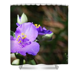 Alone In The Garden Shower Curtain by Linda Mesibov