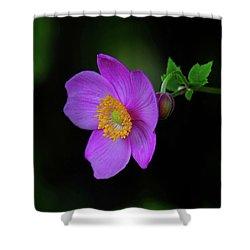 Anenome Purple Shower Curtain