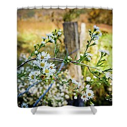 Shower Curtain featuring the photograph Along A Fence Row by Douglas Stucky