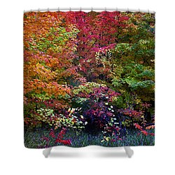 Along M37 In Autumn 2014 Shower Curtain