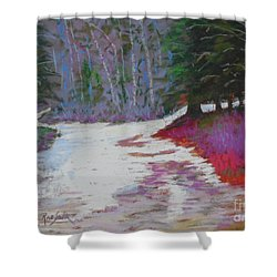 Along The 103  Shower Curtain