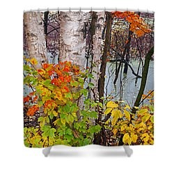 Along The Breezeway In Autumn 2014 Shower Curtain
