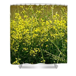 Along The Byou Shower Curtain