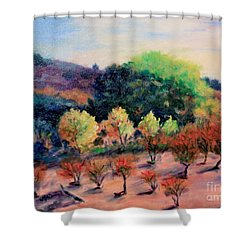 Along The Highway Shower Curtain by Marcia Dutton