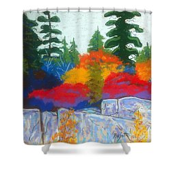 Along The Highway  Shower Curtain