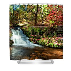 Along The Horton Trail Shower Curtain