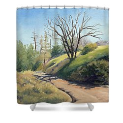 Along The Pacific Crest Trail Shower Curtain