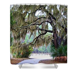 Shower Curtain featuring the photograph Along The Path by Kathryn Meyer