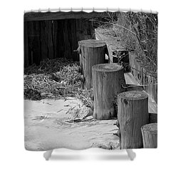 Along The Shore Shower Curtain