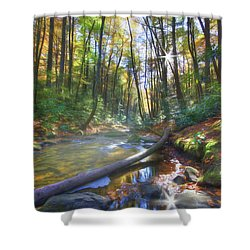 Shower Curtain featuring the digital art Along The Trail In Georgia by Sharon Batdorf