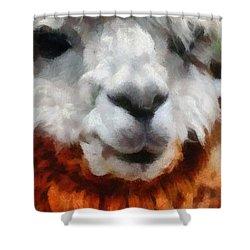 Alpaca Shower Curtain by Michelle Calkins