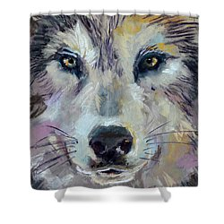 Alpha Shower Curtain by Pattie Wall