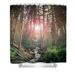Alpine Flare Shower Curtain