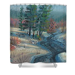 Alpine Stream Shower Curtain by Donald Maier