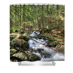 Alpine Water Falls Shower Curtain