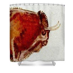 Altamira Prehistoric Bison Detail Shower Curtain