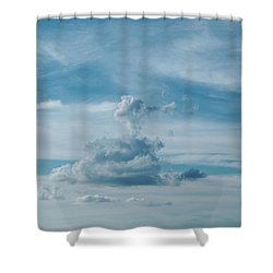 Altitude Shower Curtain by Tom Druin