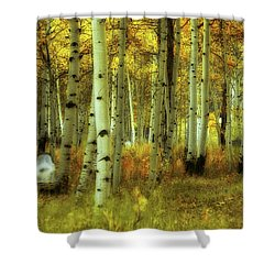 Alvarado Autumn 1 Shower Curtain by Marie Leslie