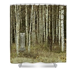 Alvarado Cemetery 42 Shower Curtain by Marie Leslie