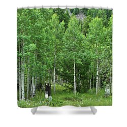 Alvarado Summer Shower Curtain by Marie Leslie