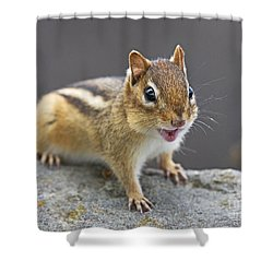 Alvinnn... Shower Curtain