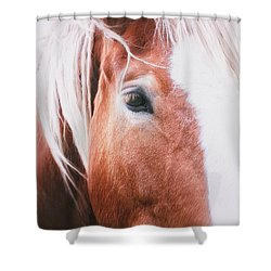 Always Dream Signed Shower Curtain
