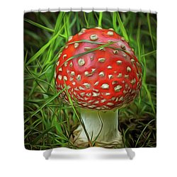 Amanita Muscaria In The Grass Shower Curtain by Michal Boubin
