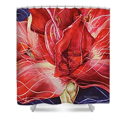 Amaryllis 1 Shower Curtain