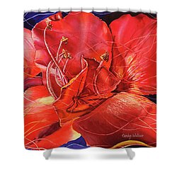 Amaryllis 2 Shower Curtain