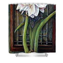 Shower Curtain featuring the painting Amaryllis In The Window by Bernadette Krupa