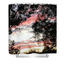 Amazing Clouds Black Trees Shower Curtain