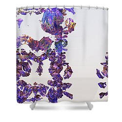 Amazing Delicate Fractal Pattern Shower Curtain