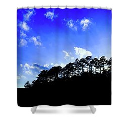 Amazing Evening Shower Curtain