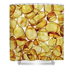 Amber #2h2a0902 Shower Curtain