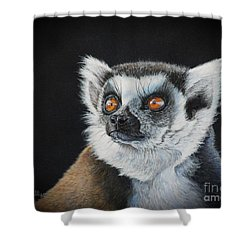 Amber Eyes......lemur Shower Curtain