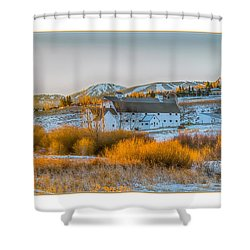Amber Grass Shower Curtain by R Thomas Berner